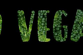 veg ricette