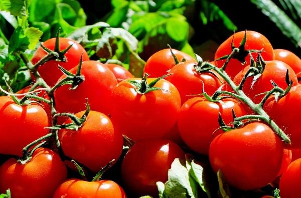 pomodori ricetta gazpacho al pomodoro